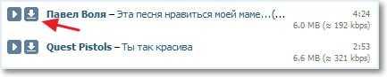 Проверяем VKontakte.ru Downloader