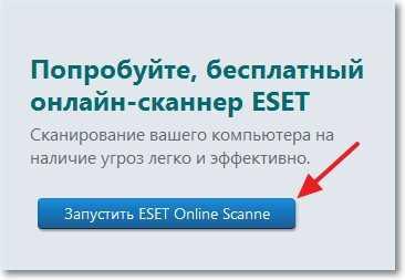 Запускаем ESET Online Scanner