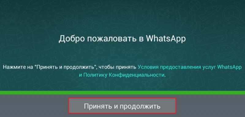 Установка Whatsapp.