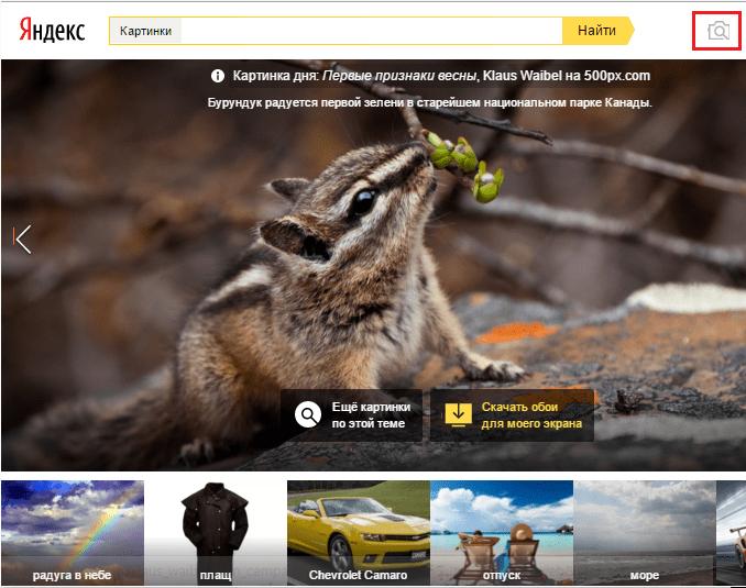 Найти картинку в Яндекс.