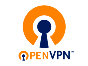 OpenVPN.