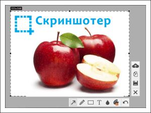 Программа Скриншотер.