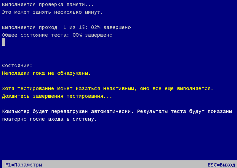 Интерфейс Windows Memory Diagnostic Tool.