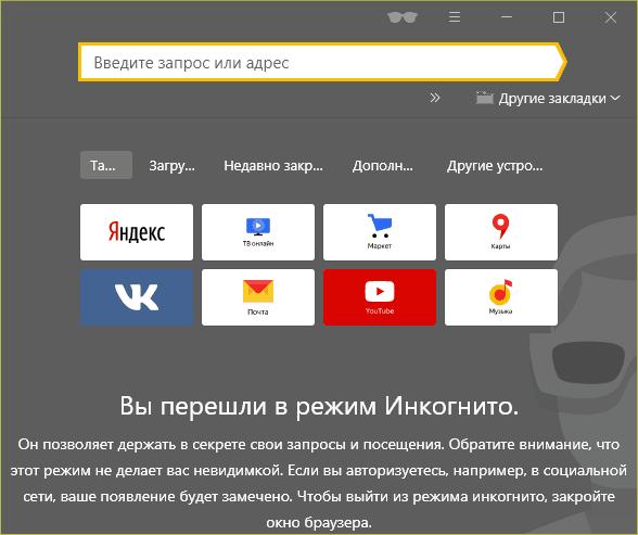 Вид приватного окна в Яндекс.Браузере.