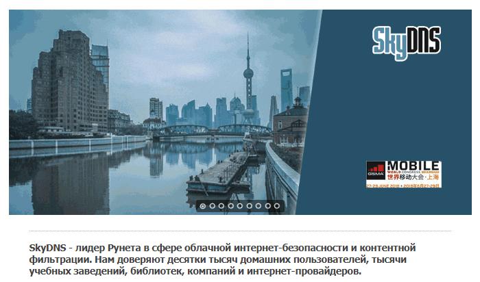 Сайт SkyDNS.