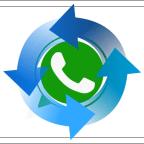 Как восстановить сообщения в Whatsapp.