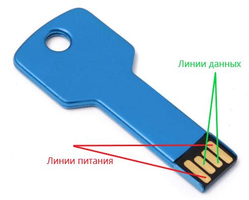 Линии питания и данных USB.
